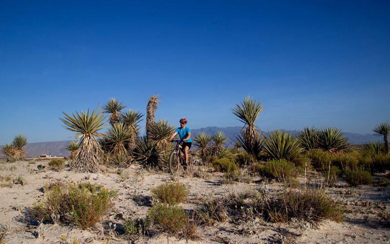 las-playitas-del-desierto-bici3