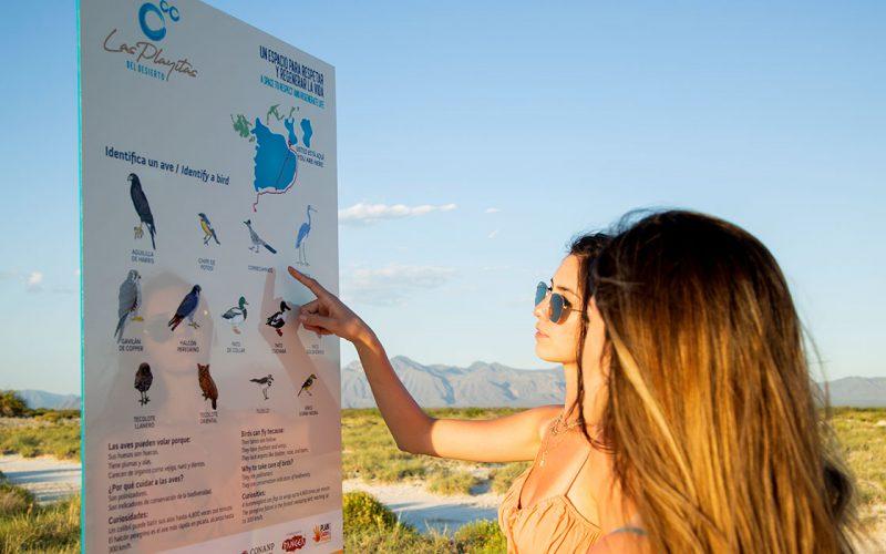las-playitas-del-desierto-selfie-day-pass2